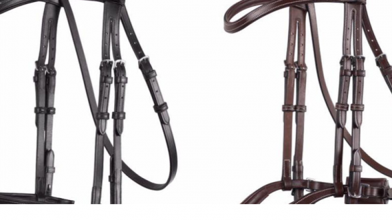 Montar Bridles: Are They Right For Your Horse?
