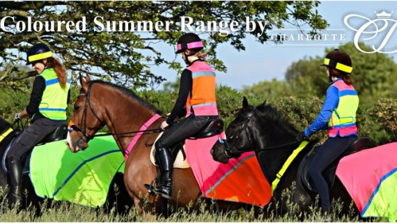NEW Equisafety Summer HiViz!