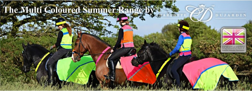 equisafety mesh summer hi viz exercise sheet