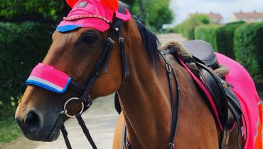 Multicoloured Charlotte Dujardin HiViz Range To The Test!