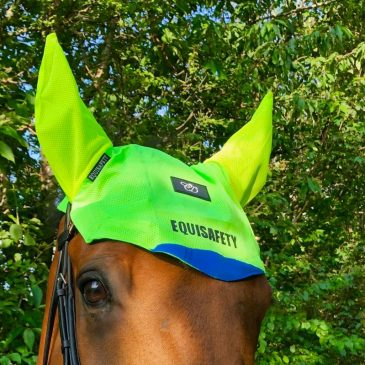 equisafety charlotte dujardin ears