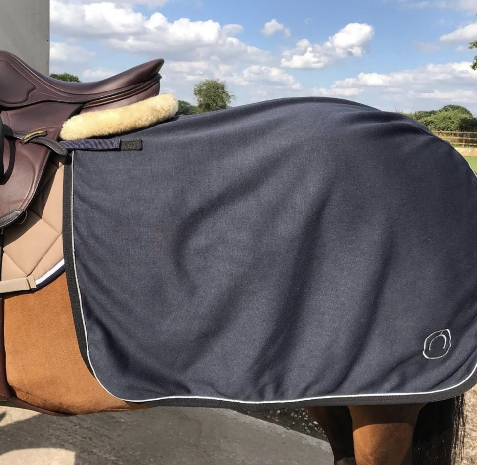 waterproof horse exercise quater sheet