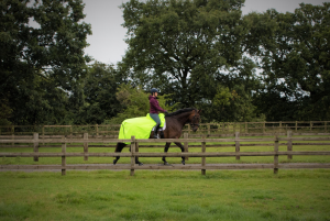 waterproof hiviz exercise sheet summer finer equine