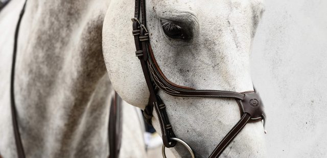 PS of Sweden Ergonomic Bridles For Your Horse